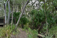 Meadowvale Nature Park,Splitters Creek