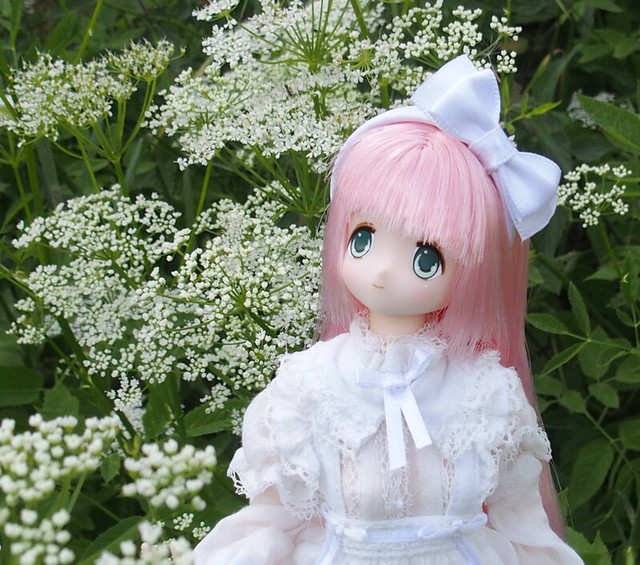 AZONE Pure Neemo Oreimo My Little Sister Can/'t Be This Cute Kuroneko Doll F//S