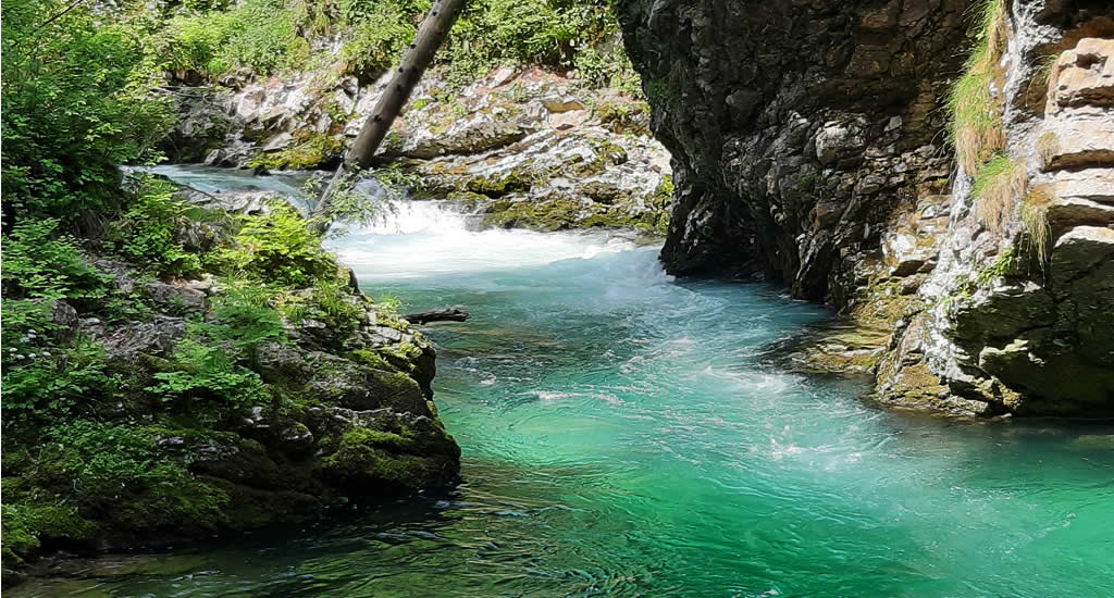 Vintgar Gorge, Slovenië | Mooistestedentrips.nl