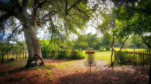 Hole 10 basket at the Flying Armadillo Disc Golf Club