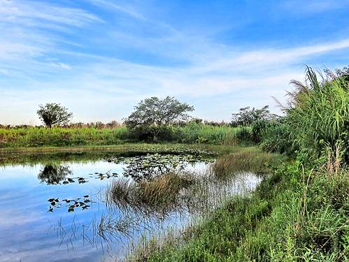 Quiet corner of canal 20190630