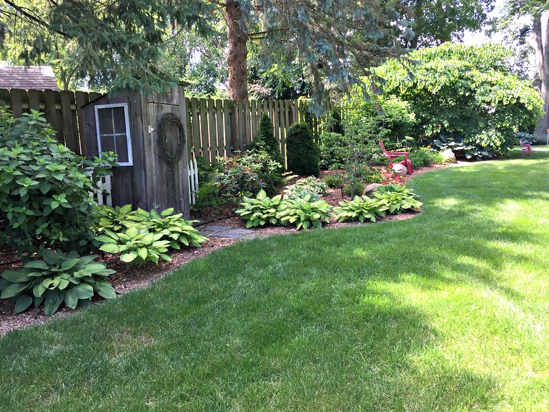garden shed with perennials