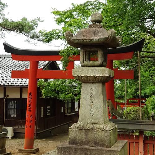 Steinlaterne und Torii im Yoshoda-Schrein