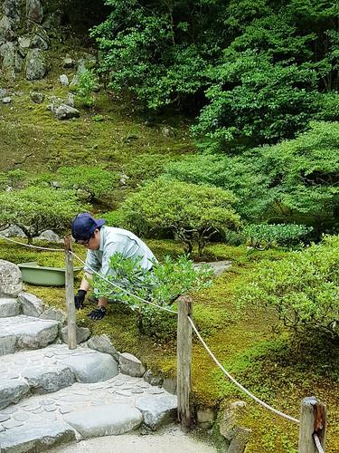 Gärtnerin im Ginkaku-ji-Tempel