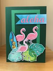Aloha V4