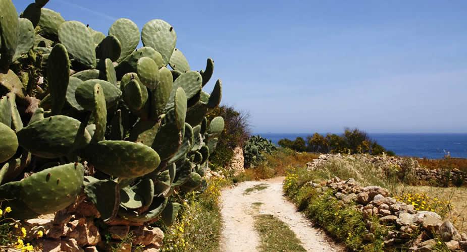 Onbekende hotspots op Malta, bekijk de tips