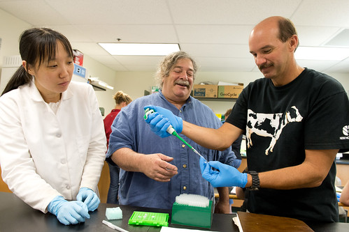 Bill Davenport, a former teacher at Nonnewaugh High School in Woodbury, gets some advice on using a micropipette from Yi Ma, left, a postdoctoral research associate, and Gerald Berkowitz, professor of plant science and landscape architecture as part of Camp DNA at UConn. Davenport recently became a 4-H Extension Educator in Litchfield County. (Peter Morenus/UConn Photo)