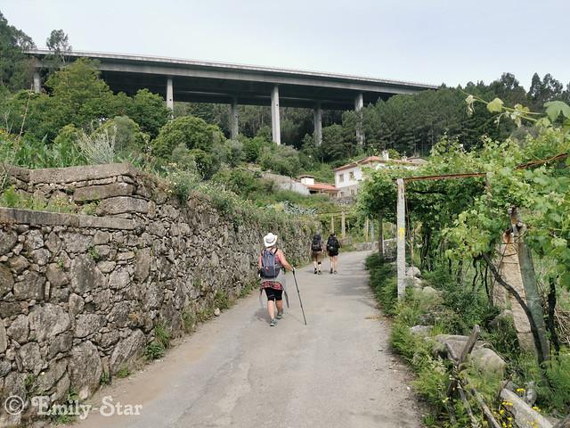 Camino Portugues-095949