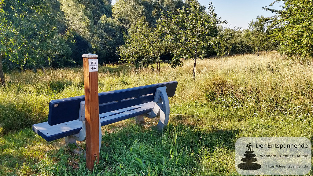 Naturschutzgebiet bei Hahnheim (Richtung Köngernheim)