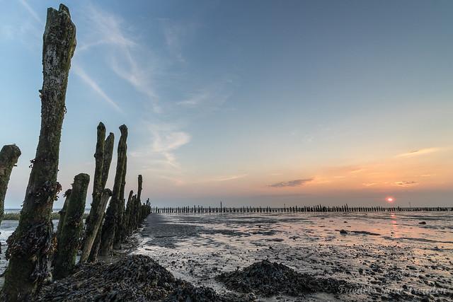 Sonnenuntergang im Watt der Wesermündung