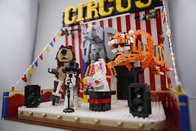 DOGOD_Animal_Circus_012