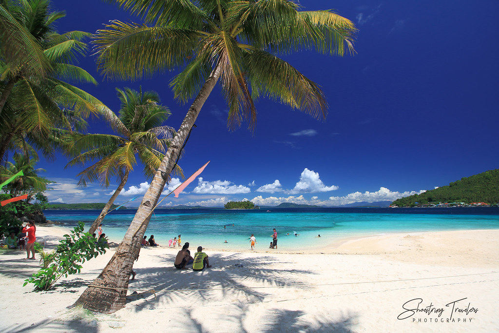 coconut palms at Duyos Beach