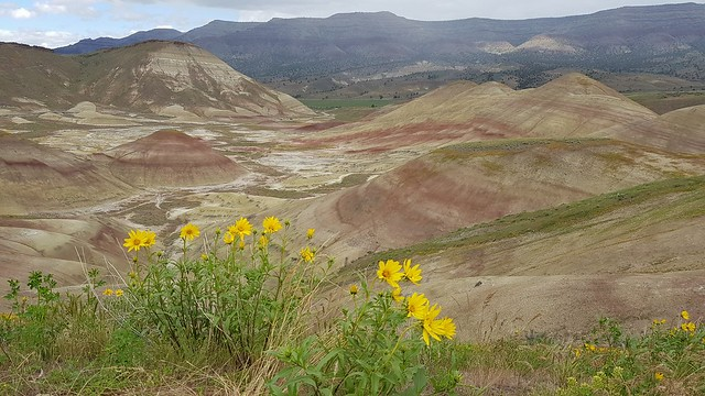 Painted Hills Overlook at John Day NM, OR