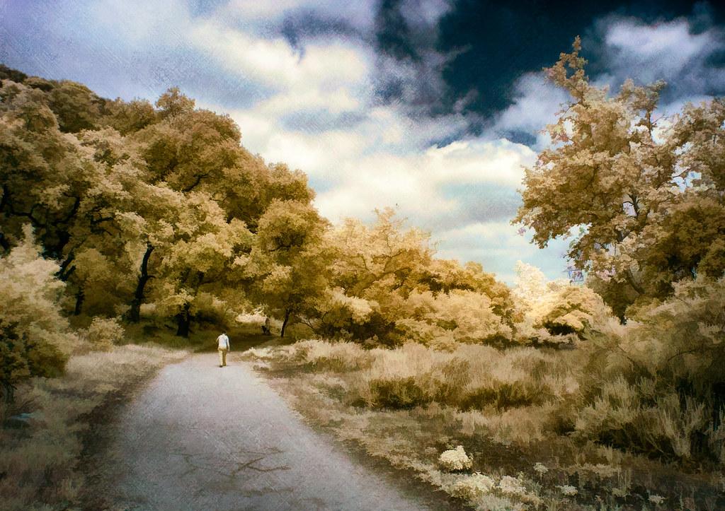 Rural Lane - Textured IR Pentatone