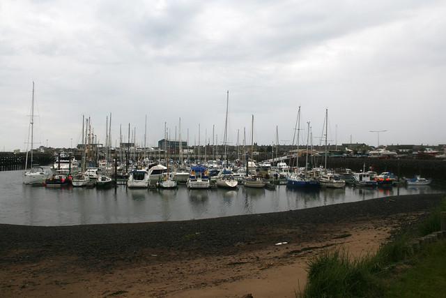 The marina at Amble