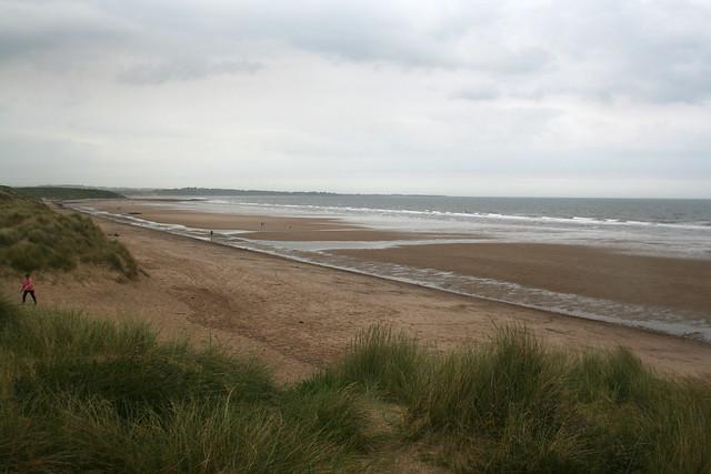 The coast north of Amble