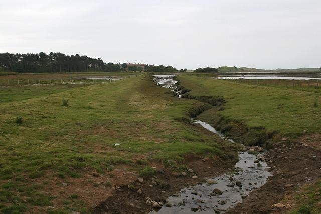 The coast near Alnmouth
