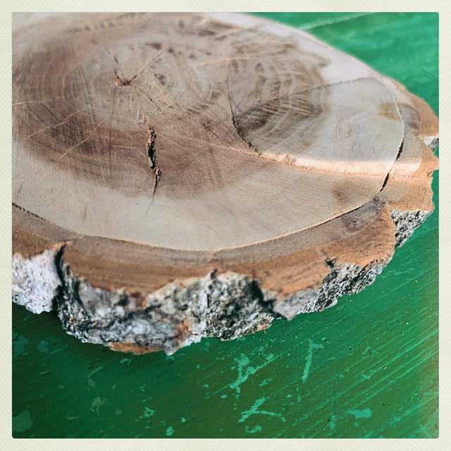 Wood Slice Platform