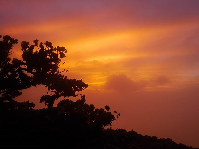 Gentle sunrise