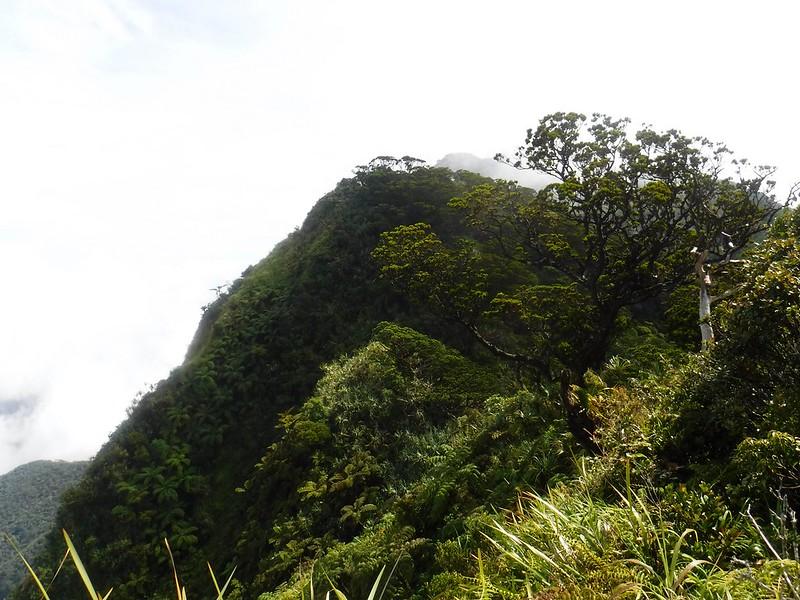 Summit path