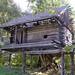 В Костроме ждут волонтеров для восстановления музея деревянного зодчества