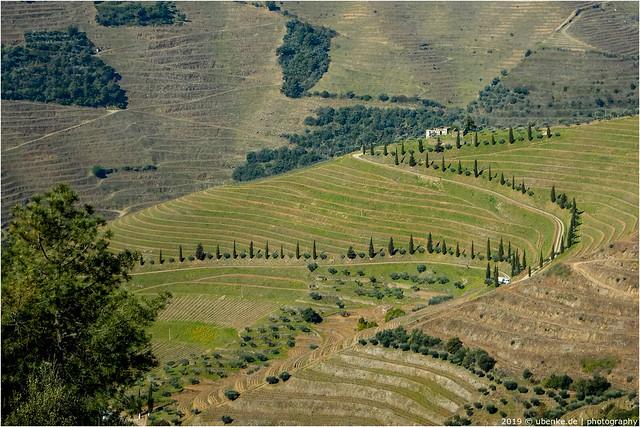 _tuscanylike