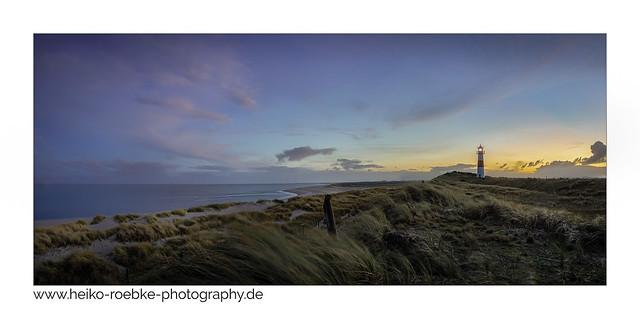 Landschaft am Meer / landscape by the sea