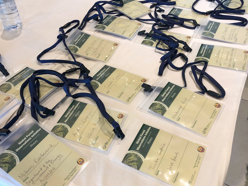 Annual 2019 plenary of the Global Forest Observations Initiative (GFOI)
