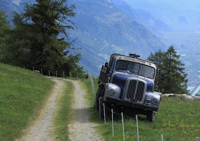 vieux camion pour transporter l'eau au bétail