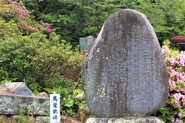 hakoshima-chinkai-gosyuin004