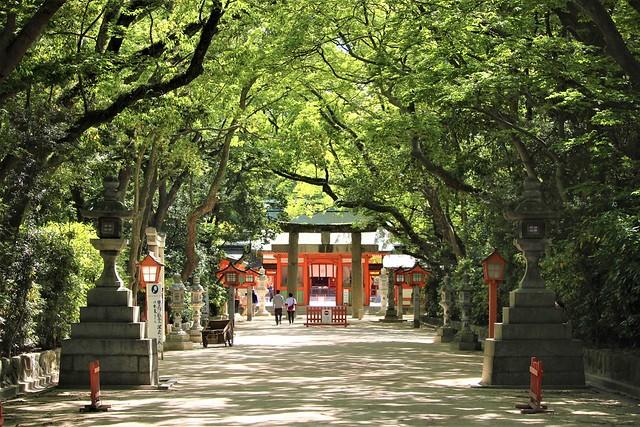 sumiyoshi-gosyuin022