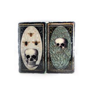 Skulls on marble