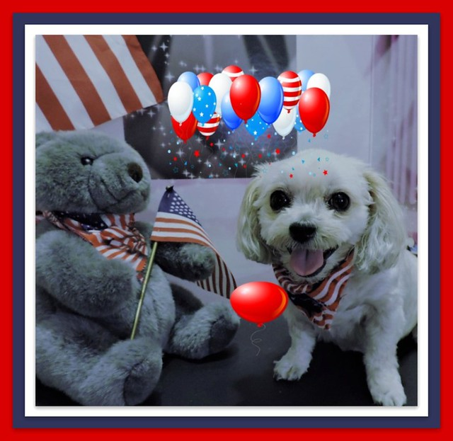 Happy 4th Of July With Love From Bella And Me :)