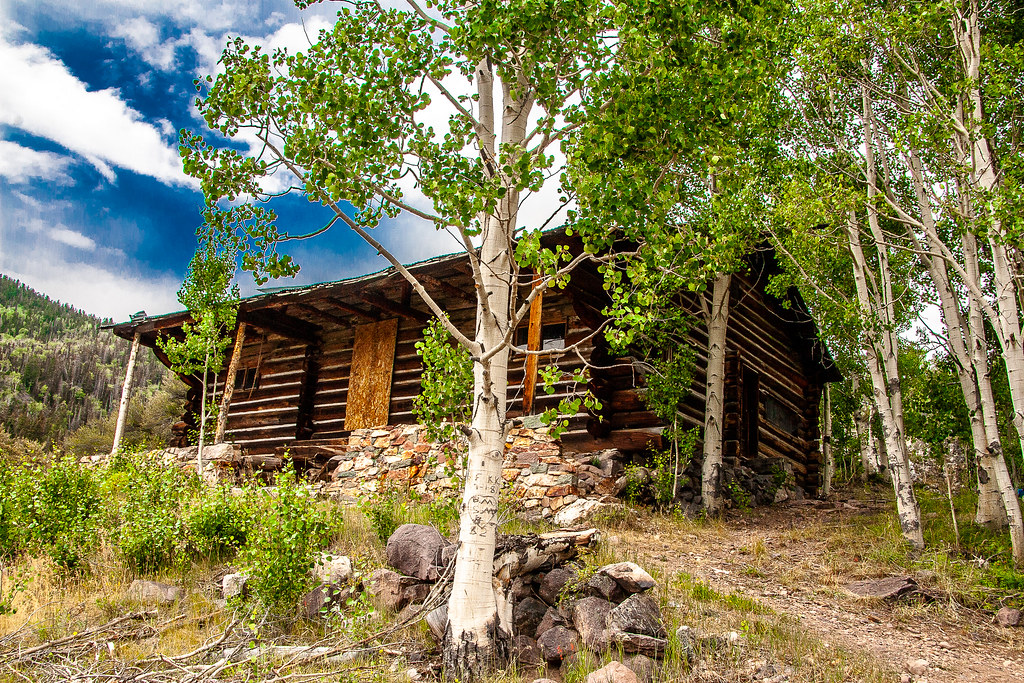 Abandoned Cabin IMG_9577