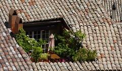 Malaucène  (Vaucluse, Fr) – Les toits vus du château.