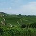 Vzadu na kopci vesnice La Morra, výhled z Barola, foto: Petr Nejedlý