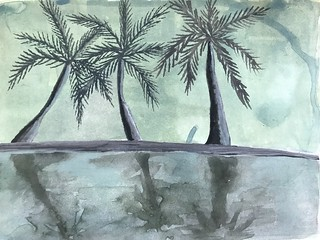 Palm Trees and Reflections | by Cat Sidh
