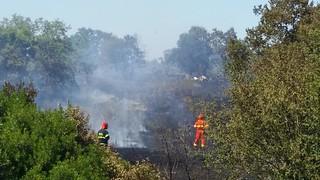 incendio Turi Conversano (2)