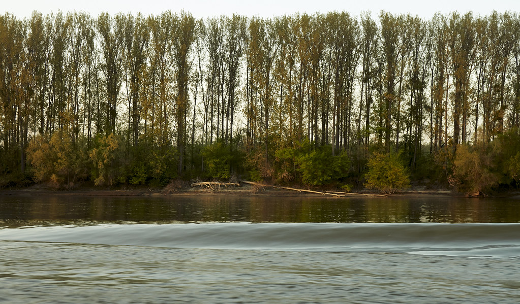Cruisin Down the Danube 2