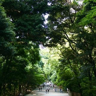 Meiji Jingu Shrine, 明治神宮