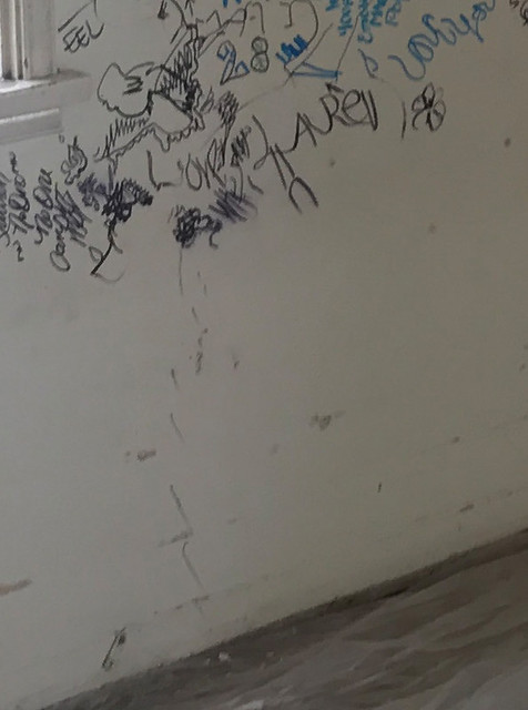 greenwood ms report vandalism graffiti