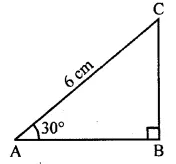 ML Aggarwal Class 10 Solutions for ICSE Maths Chapter 20 Heights and Distances MCQS Q1