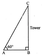 ML Aggarwal Class 10 Solutions for ICSE Maths Chapter 20 Heights and Distances MCQS Q2