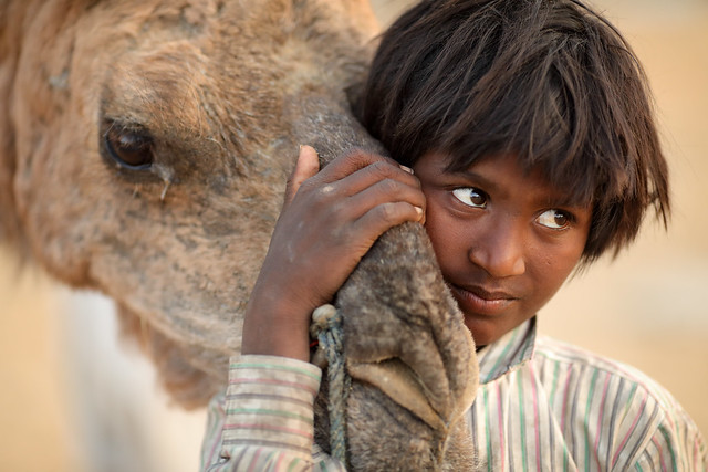 India, Gypsy boy in Pushkar