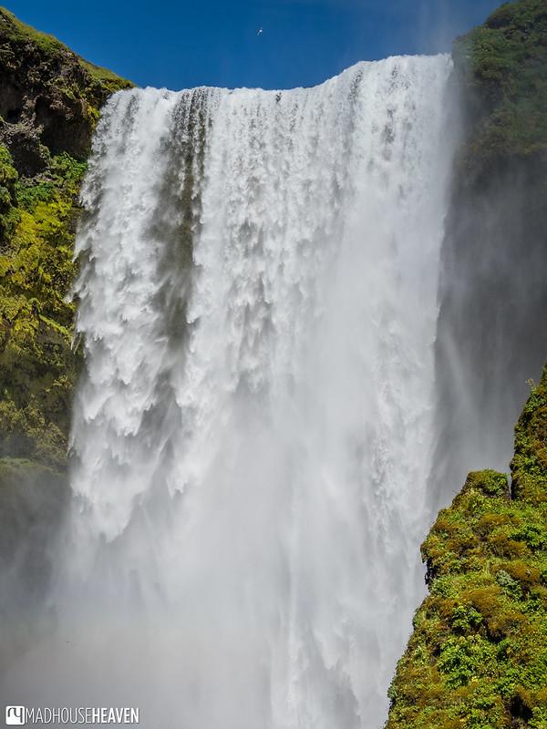 Iceland - 5931