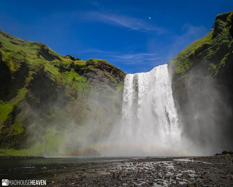 Iceland - 5908