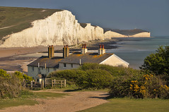 Gesso / Chalk (Seven Sisters Country Park, East Sussex, United Kingdom)