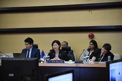 7th ASEAN-New Zealand JCC Meeting