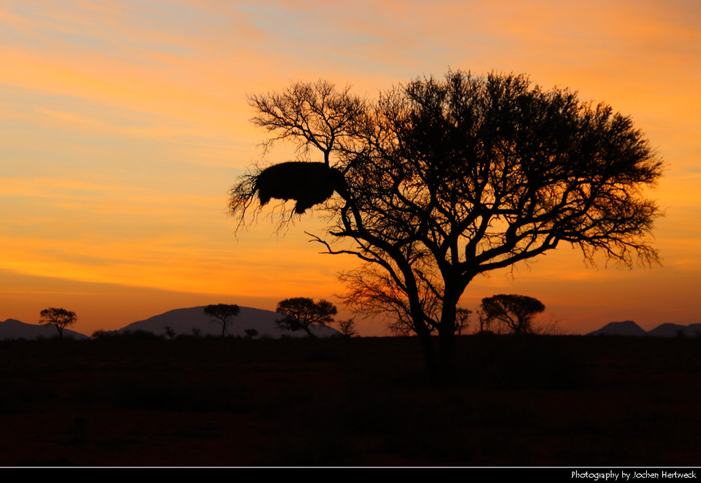 Sunset, We Kebi Safari Lodge, Namibia