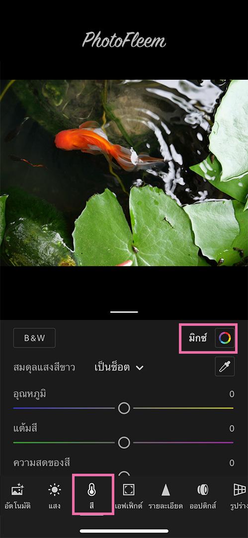 Lightroom-Film-Fish-basin-01
